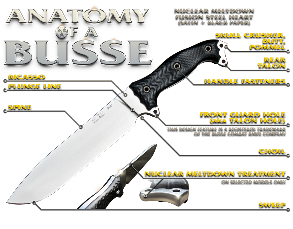 [Изображение: anatomy-of-a-busse-yellowtext.png]